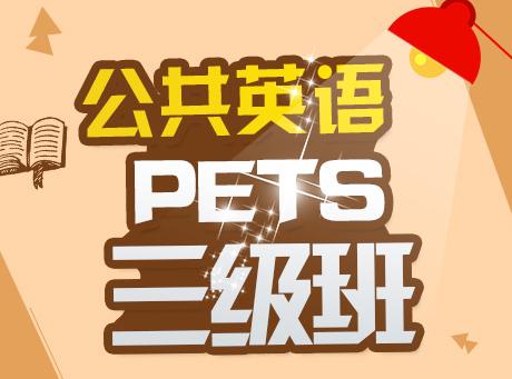 新世界教育公共英语(PETS)三级通关班