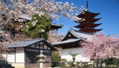 新世界教育日语作文中常见语法错误?新世界日语
